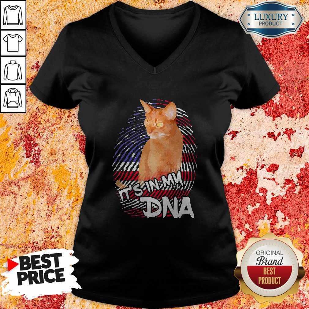 Cat It's In My DNA American   V- neck