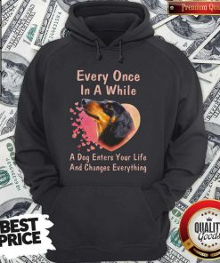 Dachshund Every Once In A While A Dog Enters Your Life And Changes Hoodiea