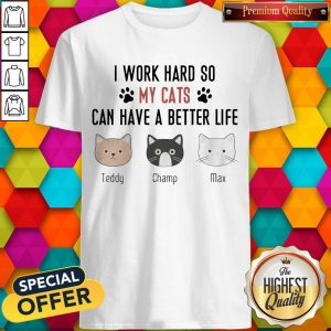I Work Hard So My Cats Can Have A Better Life Teddy Champ Max Shirt