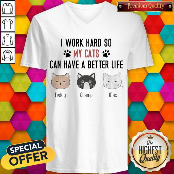 I Work Hard So My Cats Can Have A Better Life Teddy Champ Max V- neck
