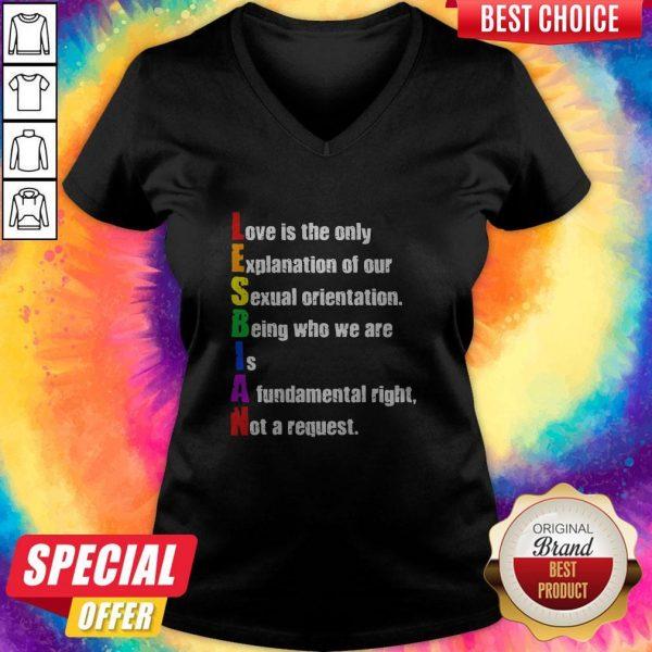 LGBT Lesbian Love Us The Only V- neck