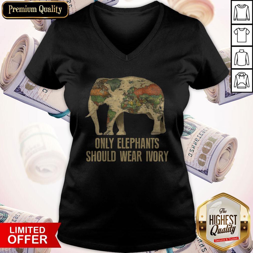 Top Only Elephants Should Wear Ivory V- neck