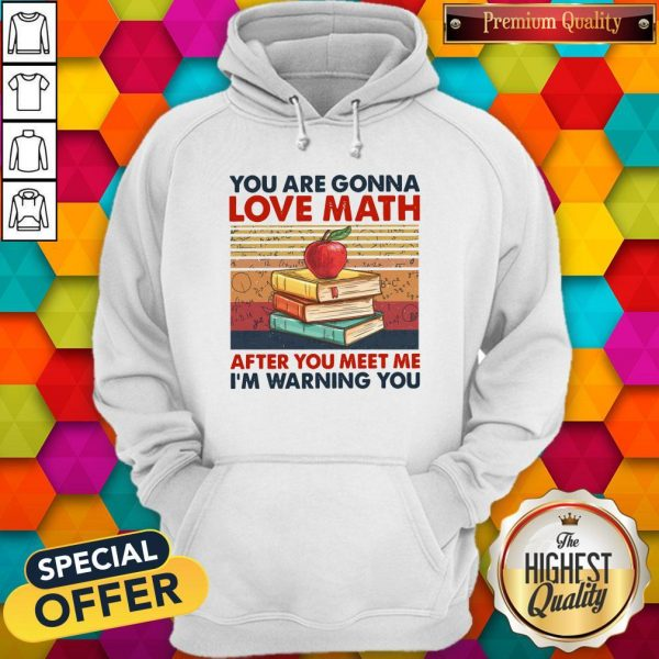 You Are Gonna Love Math After You Meet Me I'm Warning You Vintage Hoodiea