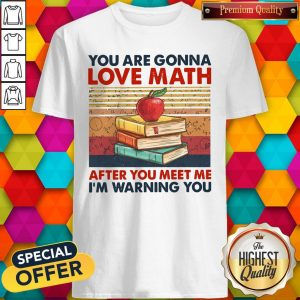 You Are Gonna Love Math After You Meet Me I'm Warning You Vintage Shirt