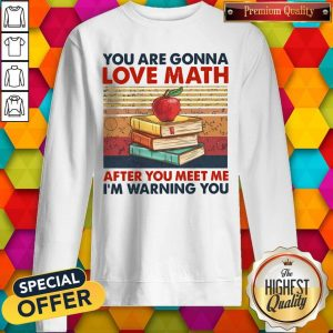 You Are Gonna Love Math After You Meet Me I'm Warning You Vintage Sweatshirt