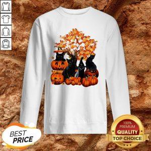 Good Cats Pumpkin Halloween SweatshirtGood Cats Pumpkin Halloween Sweatshirt