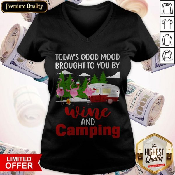 Today's Good Mood Brought To You And Camping V-neck