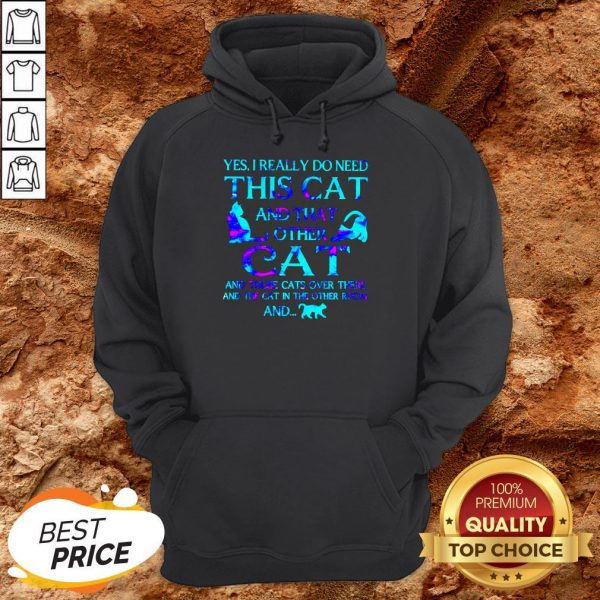 Yes I Really Do Need This Cat There And The Cat In The Other Room Hoodie