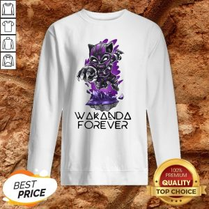 Chadwick Boseman Wakanda Forever 1977 2020 Sweatshirt