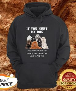 If You Hurt My Dog I Will Slap You So Hard Even Google Won't Be Able To Find You Hoodie