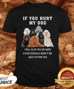 If You Hurt My Dog I Will Slap You So Hard Even Google Won't Be Able To Find You Shirt