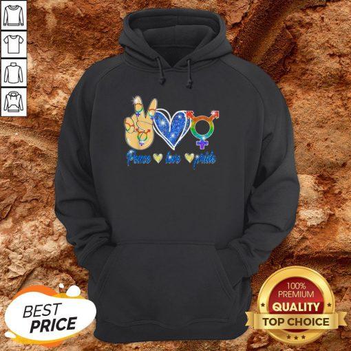 LGBT Lesbian Gay Bisexual Peace Love Gift Apparel Hoodie
