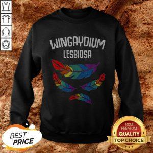Lgbt Pride Lesbian Love Wingaydium Lesbiosa Rainbow Hoodie