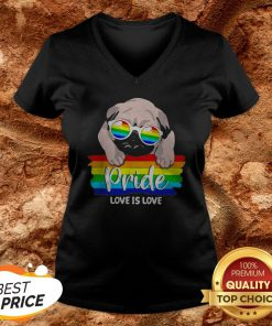 LGBT Pug Pride Love Is Love V-neck