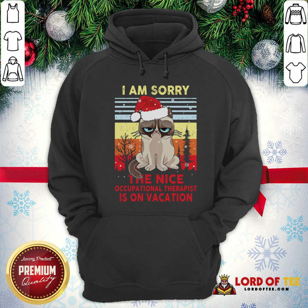 Awesome Cat Santa I Am Sorry The Nice Occupational Therapist Is On Vacation Vintage Hoodie