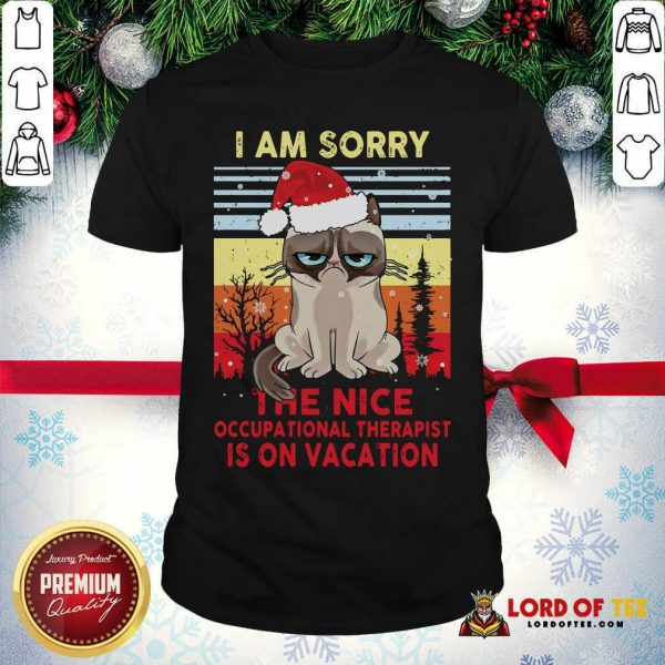 Awesome Cat Santa I Am Sorry The Nice Occupational Therapist Is On Vacation Vintage Shirt