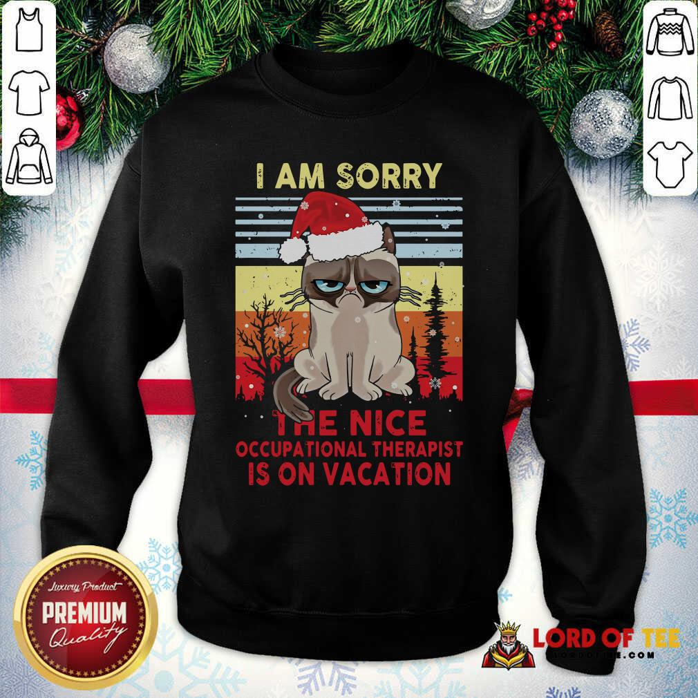 Awesome Cat Santa I Am Sorry The Nice Occupational Therapist Is On Vacation Vintage SweatShirt