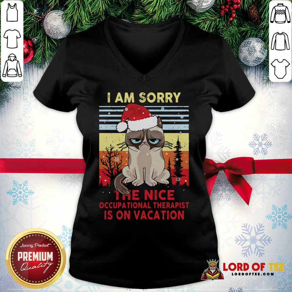 Awesome Cat Santa I Am Sorry The Nice Occupational Therapist Is On Vacation Vintage V-neck