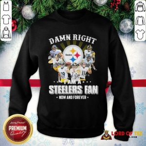 Damn Right I Am A Pittsburgh Steelers Fan Now And Forever Signature SweatShirt