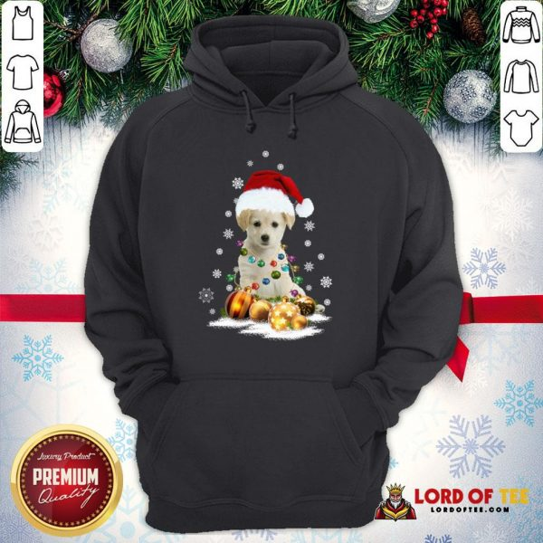 Official Dogs Merry Christmas Ugly Hoodie