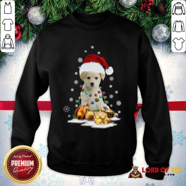 Official Dogs Merry Christmas Ugly SweatShirt
