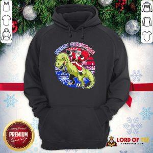 Perfect Santa Riding Dinosaur Merry Christmas Hoodie