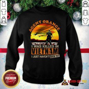 Agent Orange I Was Killed In Vietnam Veteran I Just Haven't Died Yet Sweatshirt - Desisn By Lordoftee.com