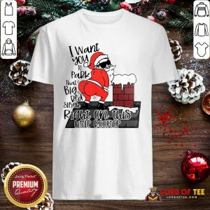 Santa Claus I Want You To Park That Big Red And Light Right On This Rooftop Ugly Christmas Shirt-Design By Lordoftee.com