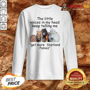 The Little Voices In My Head Keep Telling Me Get More Shetland Ponies Horses Sweatshirt - Desisn By Lordoftee.com