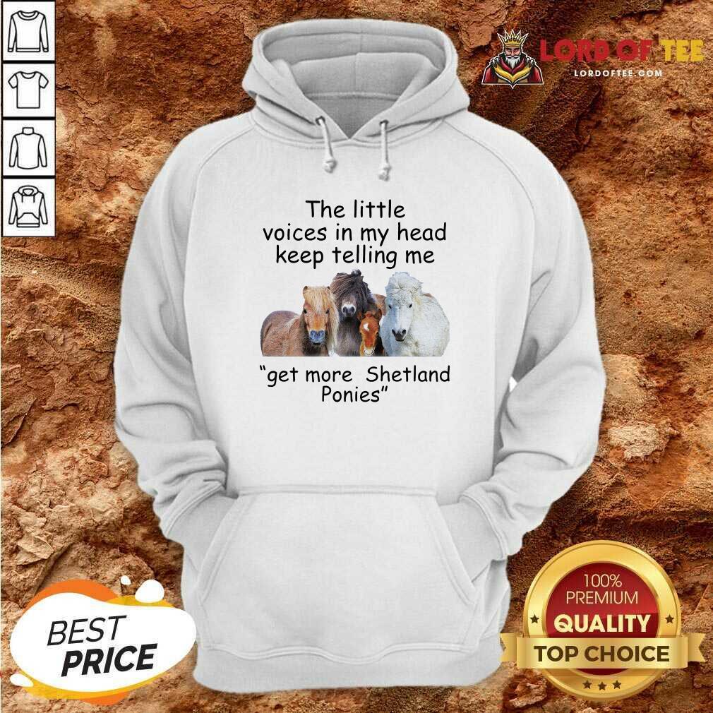 The Little Voices In My Head Keep Telling Me Get More Shetland Ponies Horses Hoodie - Desisn By Lordoftee.com