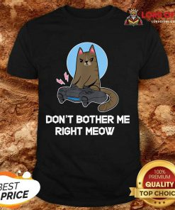 Official Do Not Bother Me Right Cat Shirt
