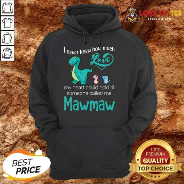 Hot Saurus I Never Knew How Much Love Mawmaw Dinosaurs Hoodie
