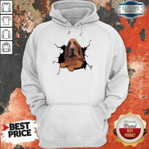 I Love Bloodhound Hoodie