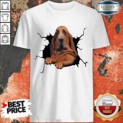 I Love Bloodhound Shirt